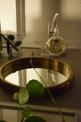 plants indoors;pendant lighting; mirrors;Edison light bulbs