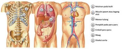 Obat Sakit Dada Kiri, Kanan dan Tengah | 100 % Alami dan Manjur