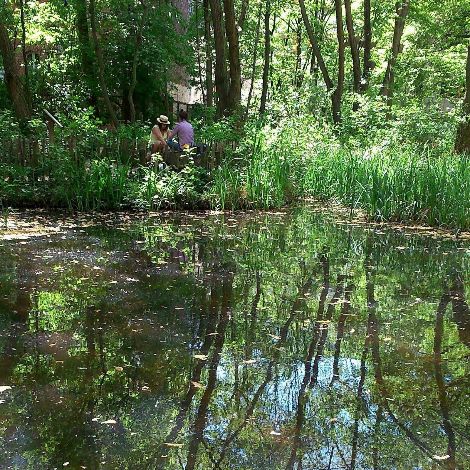Le Jardin Naturel promenons nous dans les bois