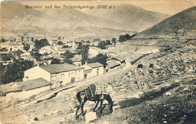Part of Bitola – view toward Pelister. Bitola during WW1