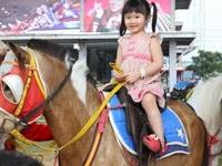 wisata menunggang kuda