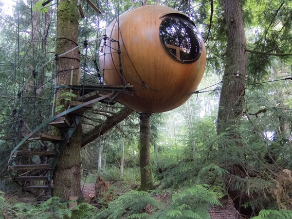 5 Houses In Trees That You Will Love 5