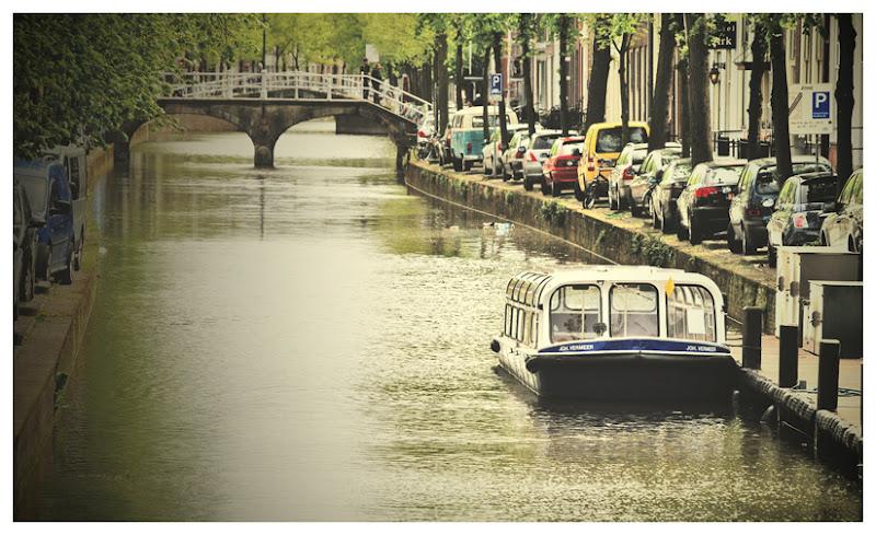 miasto Delft