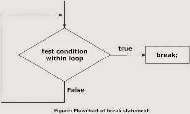 FlowChart of Break Statement
