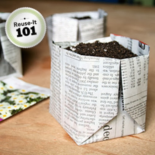 Use Newspaper as biodegradable planter