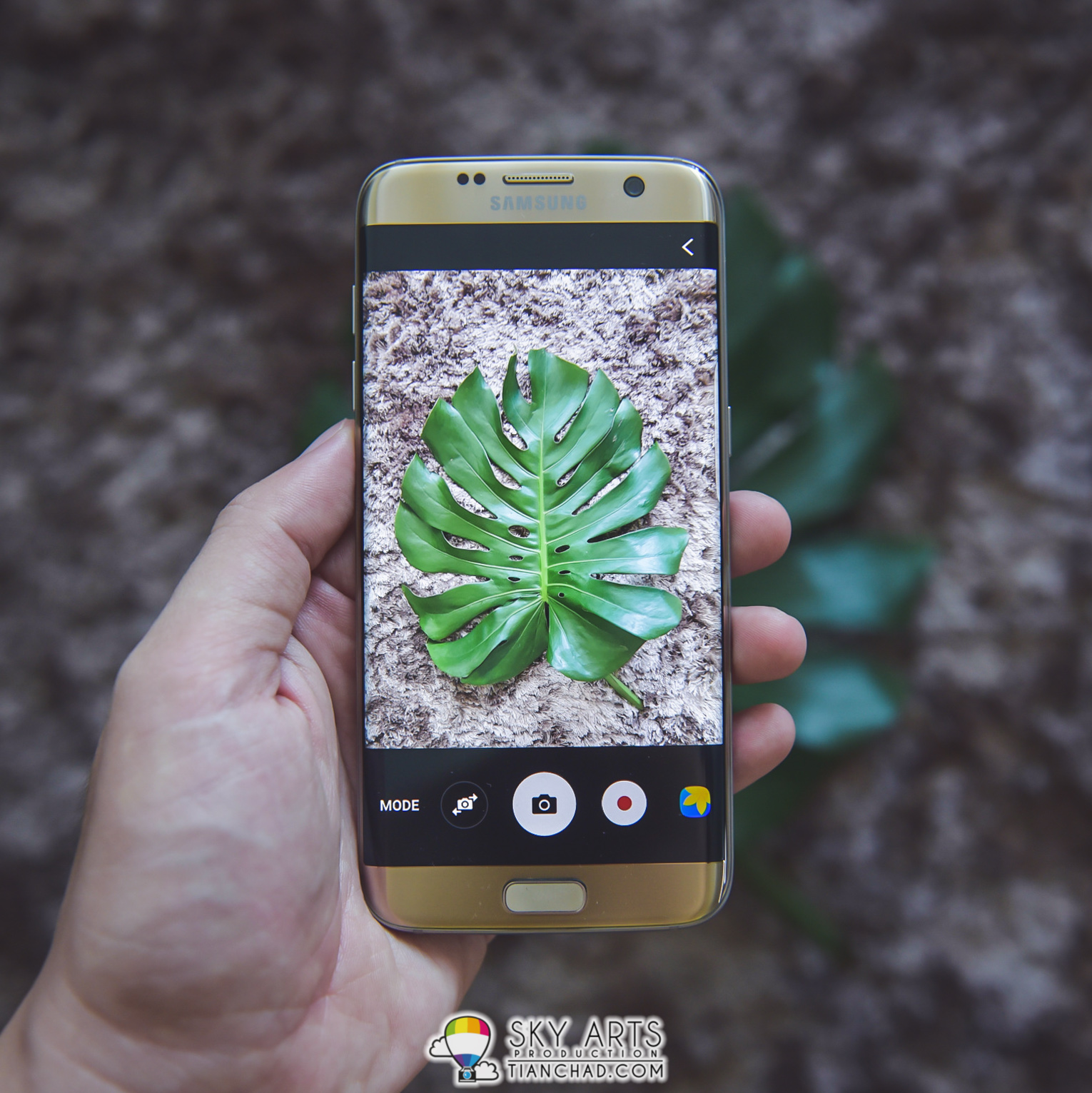 Samsung Galaxy S7 Edge is a good portable camera for outdoor activities Especially when it is water and dust resistant