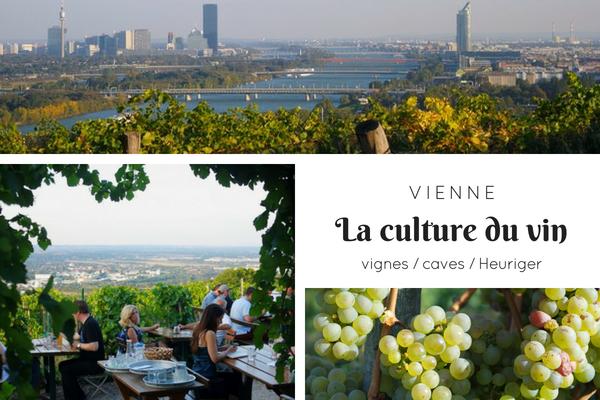 vienne vin vignes vignoble cave heuriger