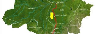 reserva aurífera do Tapajós