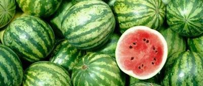 """panduan-budidaya-semangka-pupuk-organik-nasa-natural-nusantara-distributor-resmi-nasa-produk-nasa-poc-nasa-hormonik-supernasa-power-nutrition"""