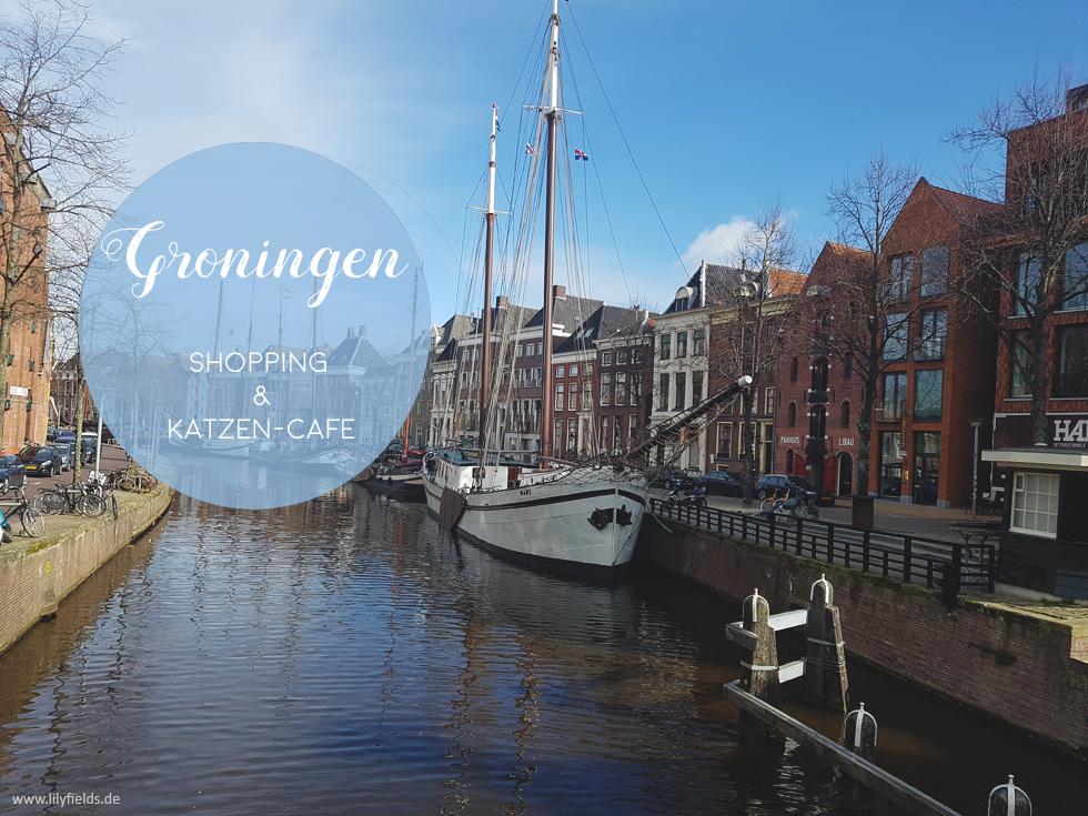Groningen - Shopping & Katzenkaffee