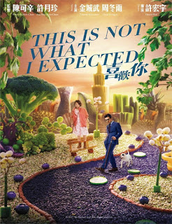 This Is Not What I Expected (2017)