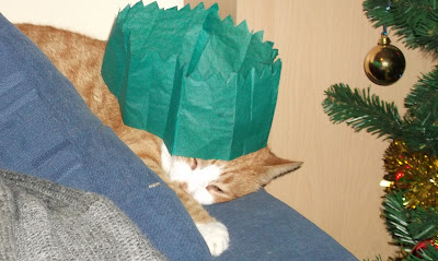 Cat in a Christmas Hat