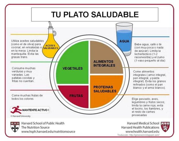 dieta plato sadulable Harvard School Public Health