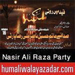 http://www.humaliwalayazadar.com/2015/06/nasir-ali-raza-party-nohay-2016.html