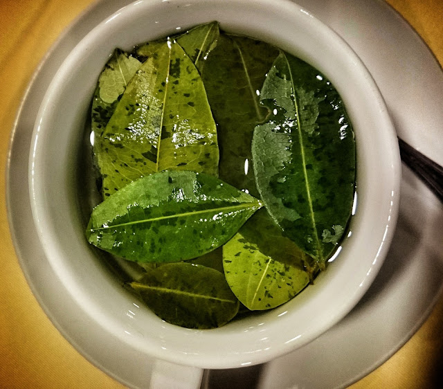 Mate de Coca - Tee aus Coca-Blättern