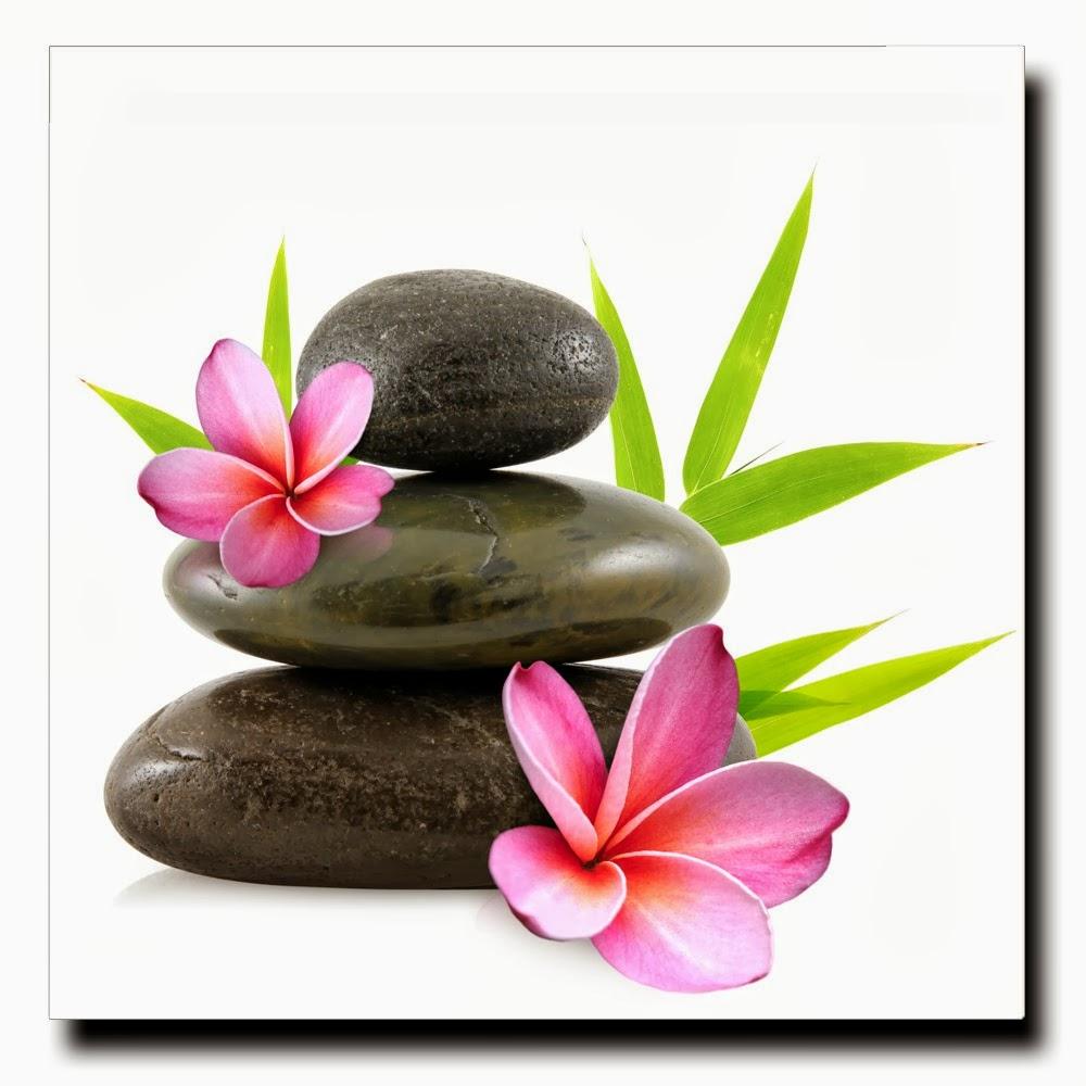 Images zen galets et fleurs