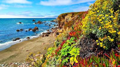 nikmat keindahan alam