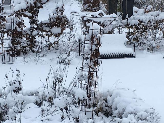 Mye snø i hagen. Foto 3