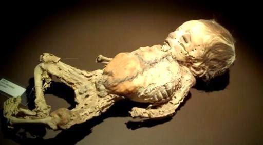 museum-mayat