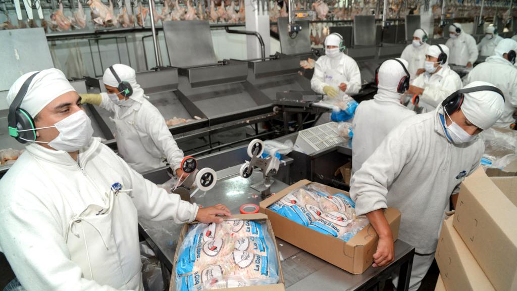 Aumentaron las exportaciones del sector agroindustrial argentino