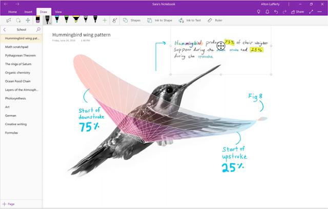 Microsoft Office 2019 sẽ ra mắt vào cuối năm nay, ngưng hỗ trợ ứng dụng OneNote cho desktop