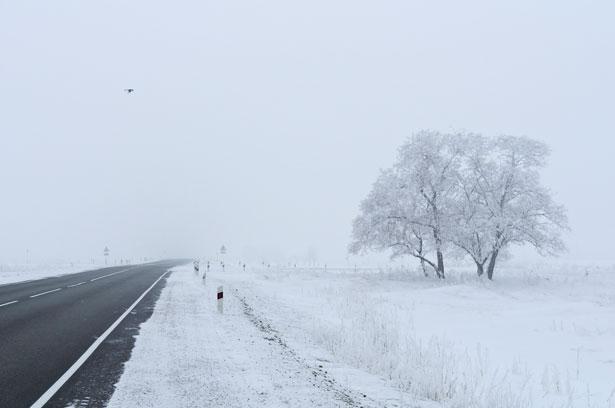 Metamora Herald Snow