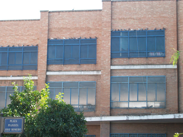 Mi otra vecina 010 en navidad 2011 part 1 mamada - 5 6
