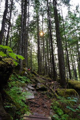 Hot Springs Trail, Nakusp