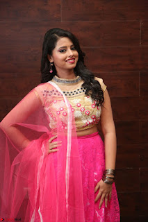 Geethanjali sizzles in Pink at Mixture Potlam Movie Audio Launch 043.JPG