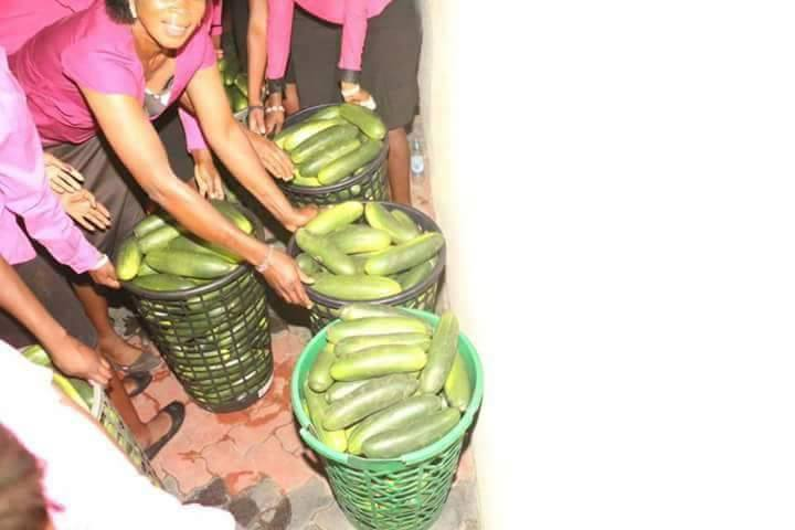 Zimbabwean Pastor Sells 'Anointed' Cucumbers To Members