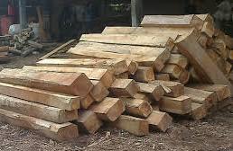 jenis kayu yang tahan air