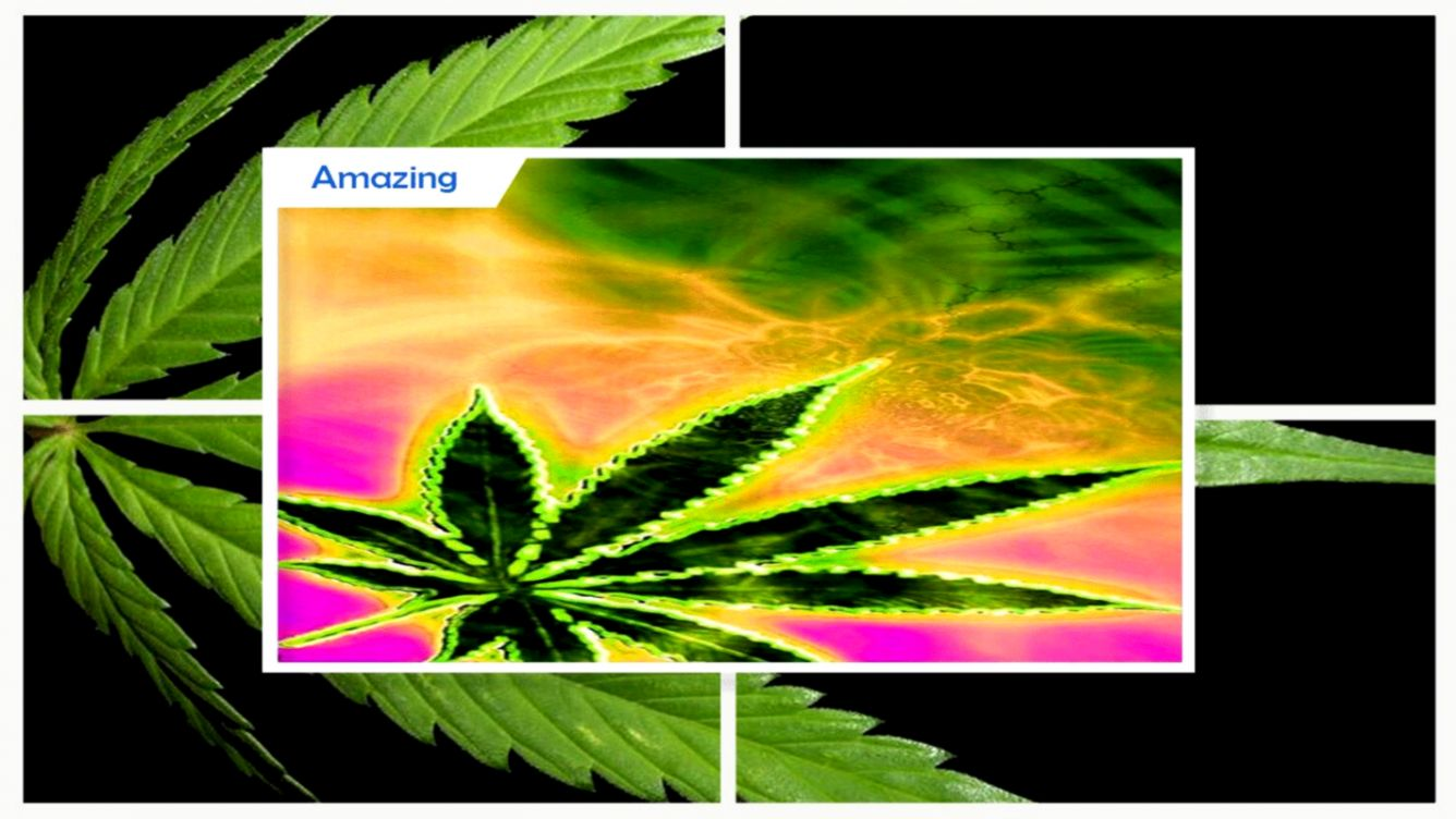 High maker Weed Live Wallpaper for Android APK Download