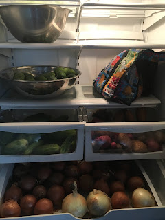 Photo of extra refrigerator with extra pickling cukes, potatoes, and onions.  https://trimazing.com/