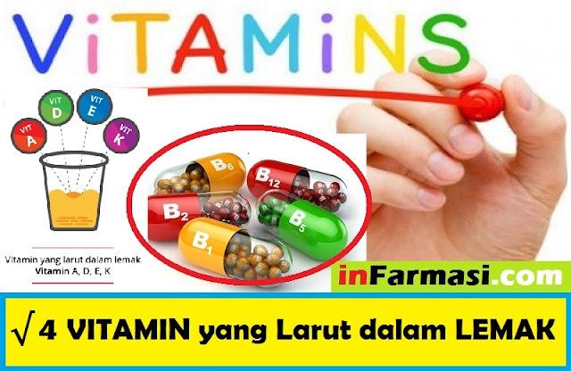 Vitamin yang larut dalam lemak