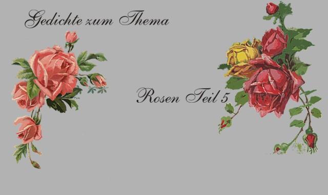 Schöne Rosen im Gedicht
