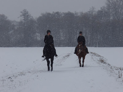 Konie, jazda konna w zimie
