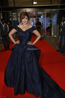 Payal Ghosh aka Harika in Dark Blue Deep Neck Sleeveless Gown at 64th Jio Filmfare Awards South 2017 ~  Exclusive 115.JPG
