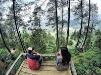 Omah Kayu Batu Malang, Spot Foto Kece di Atas Pohon