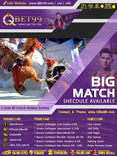 QBet99 Situs Agen Judi Sabung Ayam Terpercaya