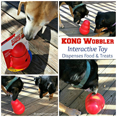 3 rescue dogs with interactive dog toy kong
