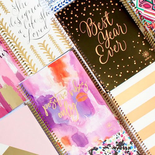 bloom daily planners 2016 17 pre orders renee beauty groupe