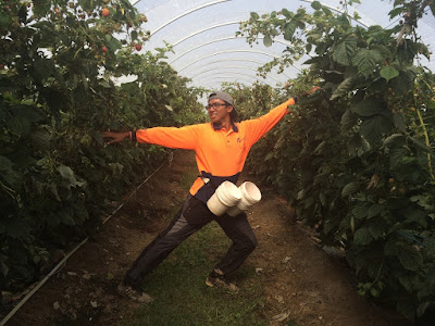 farm life australia
