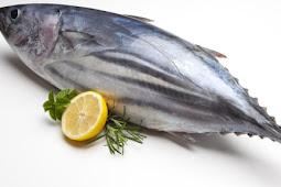 Manfaat Ikan Tuna untuk Tumbuh Kembang Anak