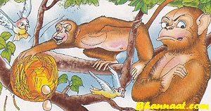 The Birds and Monkeys Story