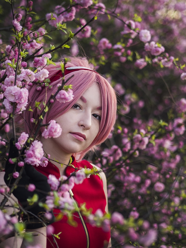 fairytales Sakura Haruno