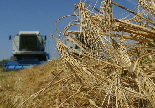 Мед, крупи та сік: ЄС дозволив завозити більше українських товарів