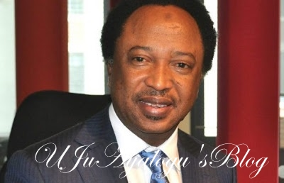 Shehu Sani: Why I decided to subject national assembly to public scrutiny