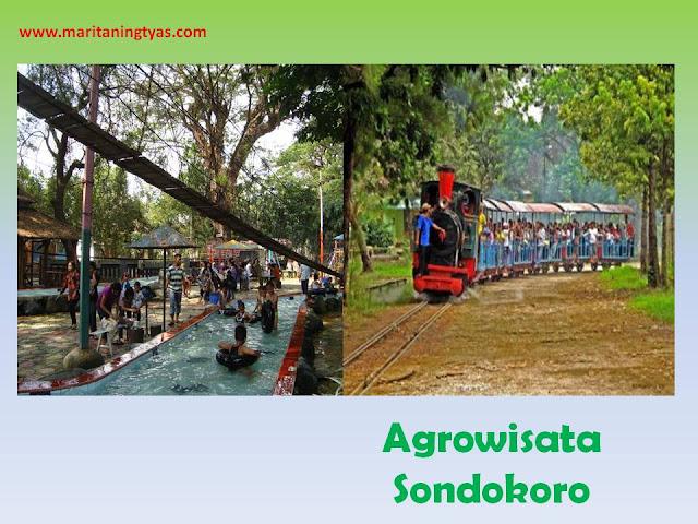 Agrowisata Sondokoro Wisata Kota Solo
