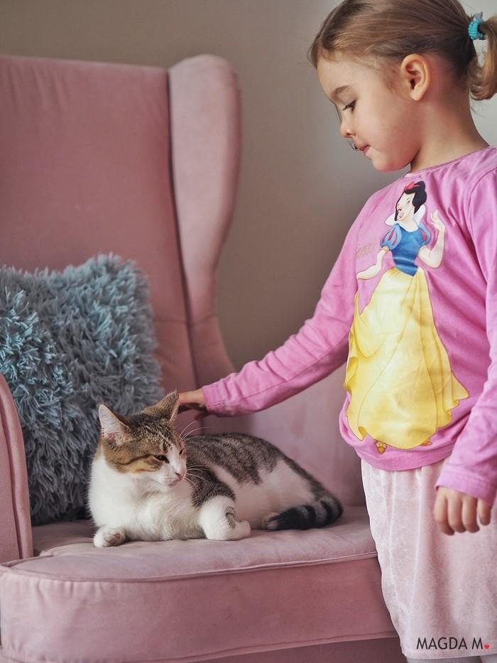 jak dbać o kota