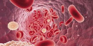 Cara herbal obati kanker darah